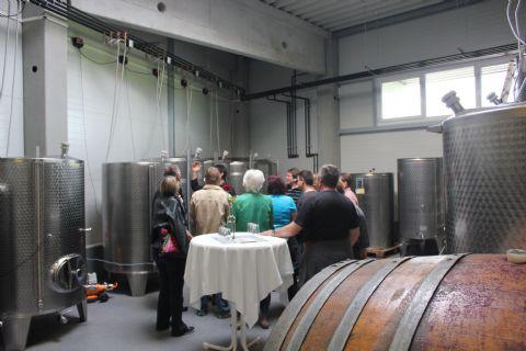 Unser-Wein-hat-ein-neues-Zuhause-004